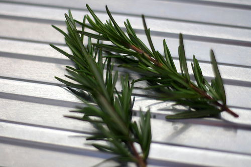 Use rosemary oil for effective dandruff treatment.